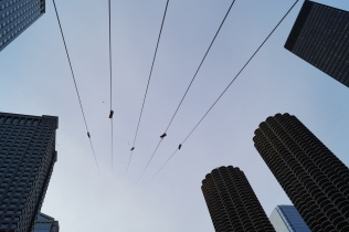 [Photo by Devin Torkelsen] Photo from Nik Wallenda's Skyscraper Live event walking over a tightrope in Chicago on Sunday, November 2, 2014.