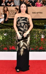 Julia Louis Dreyfus at the 2017 Screen Actors Guild Awards (SGA Awards) Red Carpet on Jan. 29, 2017.