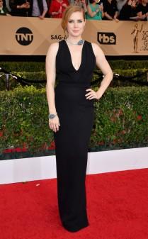 Amy Adams at the 2017 Screen Actors Guild Awards (SGA Awards) Red Carpet on Jan. 29, 2017.
