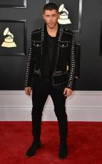 Nick Jonas on the 59th annual Grammy Awards red carpet in Los Angeles on February 12, 2017.